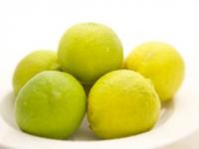 Certified Organic Limes - Tahitian