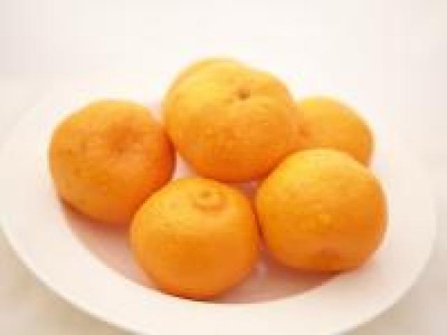Certified Organics Mandarins