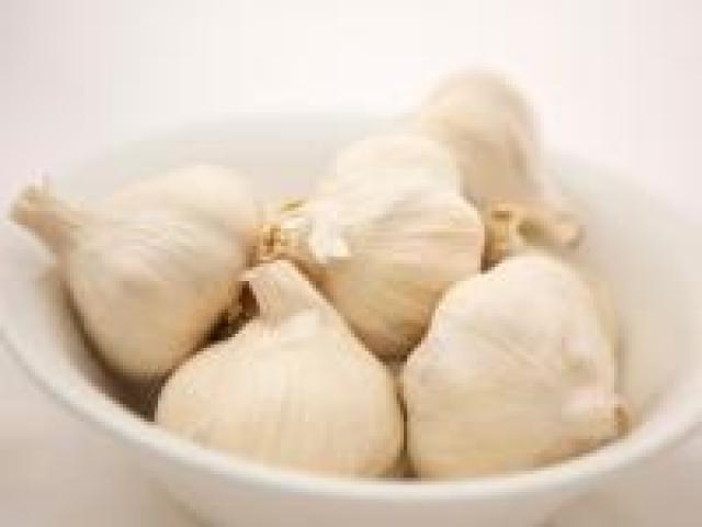 Certified Organic Garlic - Italian