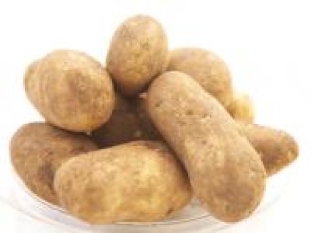 Certified Organic Potatoes - Dutch Cream - Small to medium