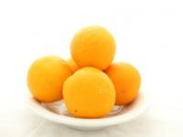 Certified Organic Oranges - Navel - Juicing