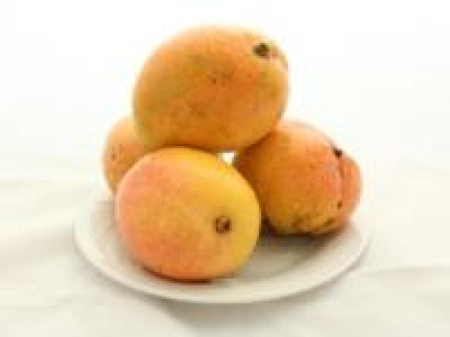 Certified Organic Mangoes- Kingston Pride