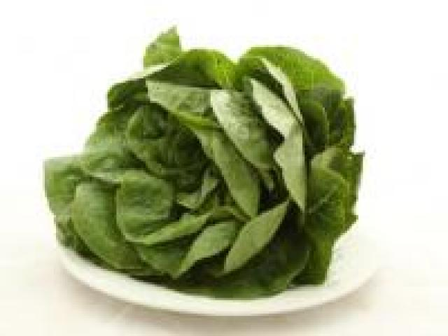 Certified Organic Lettuce - Cos Baby