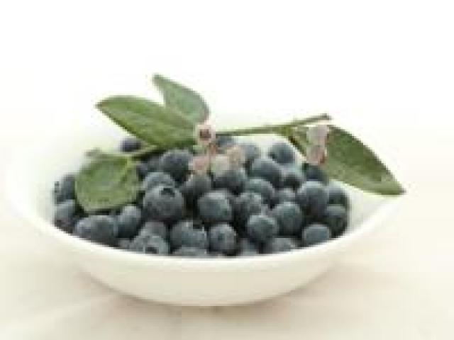 Certified Organic Blueberries - Punnets