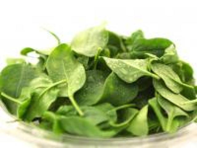 Certified Organic Spinach - English Baby Leaves - Punnets