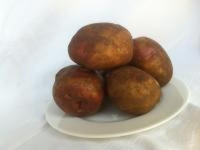 Certified Organic Potatoes - Sebago - Small to medium