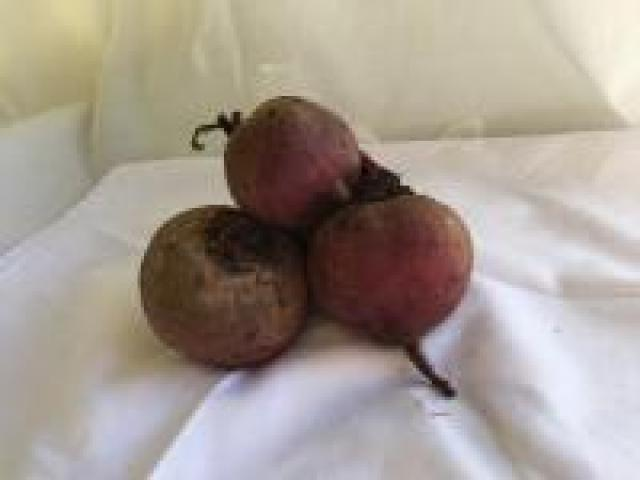 Certified Organic Beetroot - Bulbs