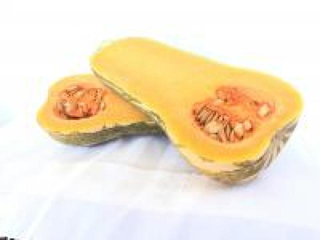 Certified Organic Pumpkins - Striped Butternut