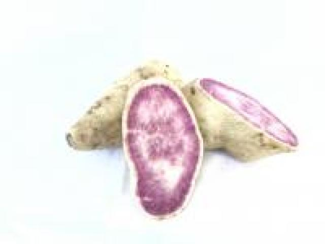Certified Organic Potatos - Sweet - White Skinned Purple Flesh