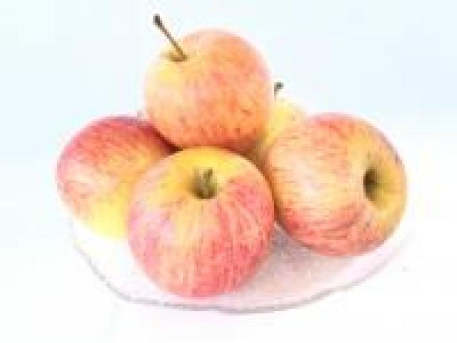 Certified Organic Apples - Royal Gala