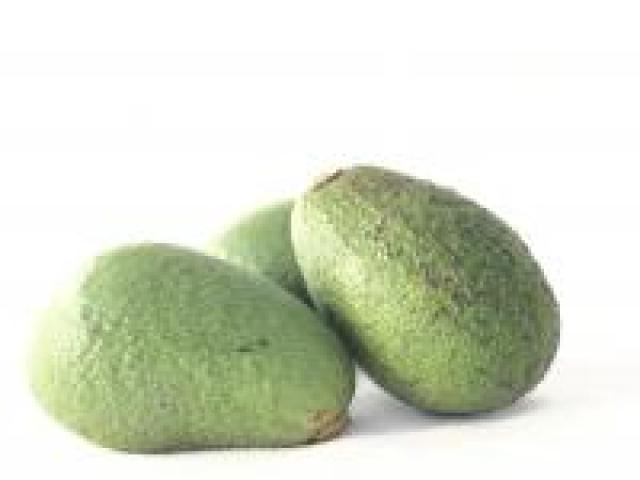 Certified Organic Avocados - First Quality