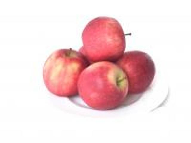 Certified Organics Apples - Pink Lady