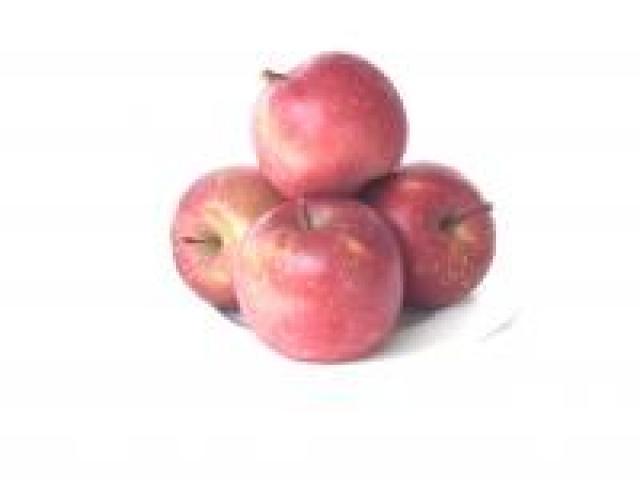 Certified Organic Apple - Fuji