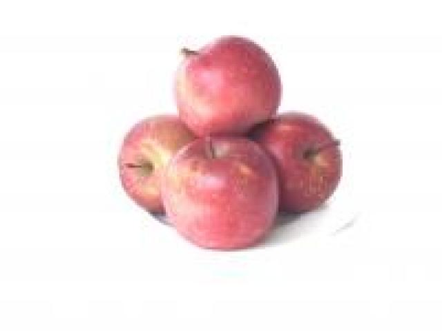 Certified Organic Apple - Fuji