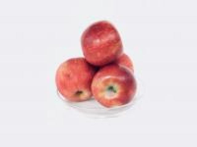 Certified Organic Apples - Sundowner