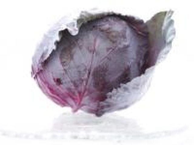 Certified Organic Cabbages - Red