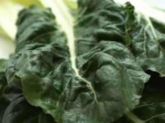 Certified Organic Silverbeet Bunches