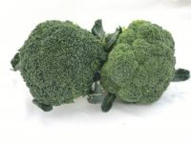Certified Organic Broccoli